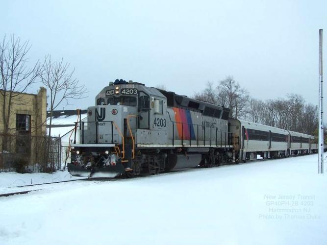 New Jersey Transit 4203 at Hammonton, NJ on Jan 13, 2010.